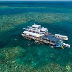 Mission Beach Reef Tour