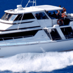 Mission Beach Reef Charter