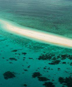 Mission Beach Reef Cruises