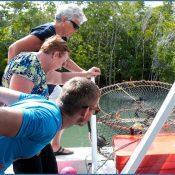Mission Beach Fishing