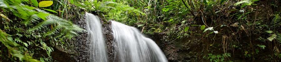 Mission Beach Waterfalls