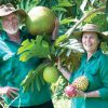fruit-forest-farm-owners-peter-and-alison-salleras