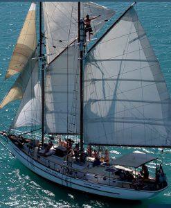 Whitsunday Sailing